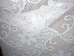 Transparent see through dress 01
